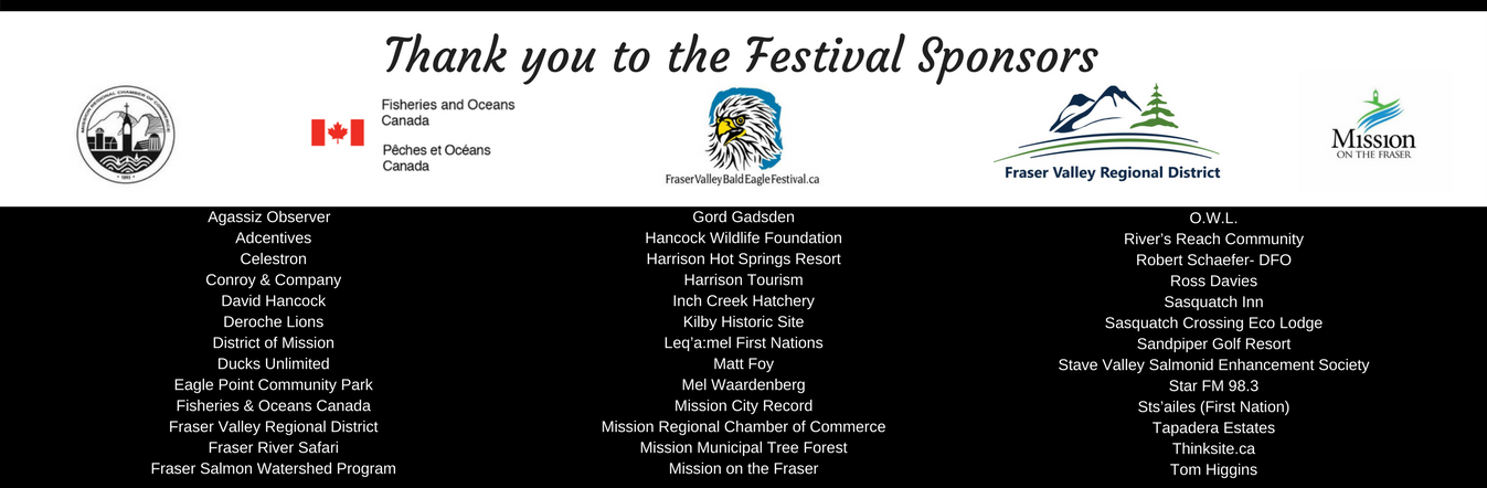 Thank you to the 2017 Festival sponsors!